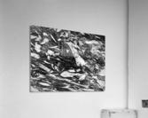 RA016  Acrylic Print