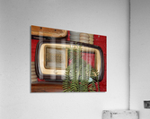 Old Radio Used For Succulent Display  Acrylic Print