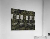 The Arts: Pareidolia  Acrylic Print