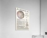 1921 Spalding Basketball Advertisement Poster  Acrylic Print