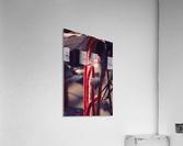 IMG_2021  Acrylic Print