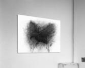 The Raven  Acrylic Print