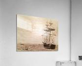 TaiPan  Acrylic Print