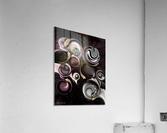 My Sensitive Morphysm  Acrylic Print