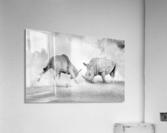 Combat.  Acrylic Print