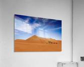 Desert Life ..  Acrylic Print