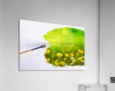 Paintbrush Outdoor Flower Flowers Sunlight  Acrylic Print