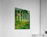 East Well Lake & Royalty  Acrylic Print