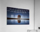 Reflection tre  Acrylic Print