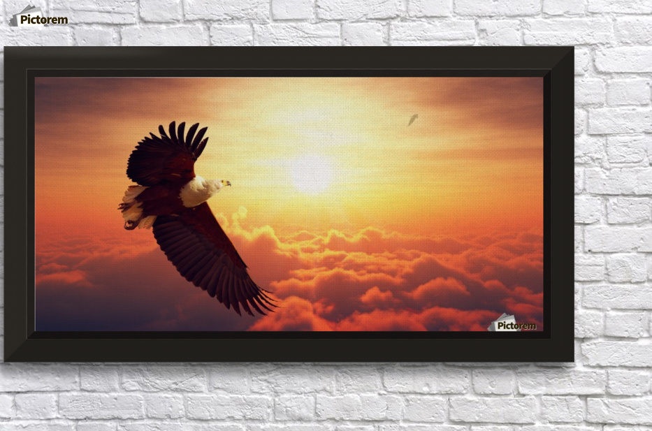 Fish Eagle flying above clouds - Johan Swanepoel - Canvas Artwork