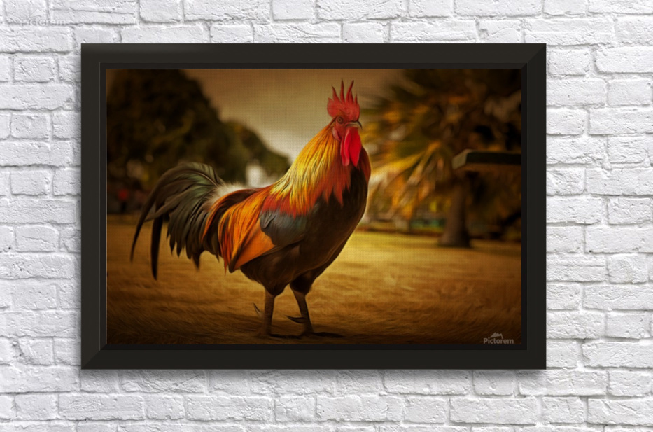 Rooster Gold - Illuminary Artworks Canvas