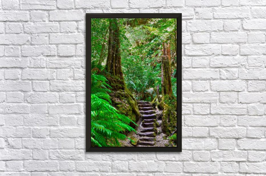 Stairway To Heaven Birsen Oz Canvas
