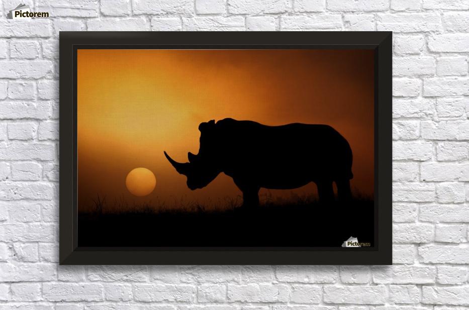 Rhino Sunrise - 1x Canvas