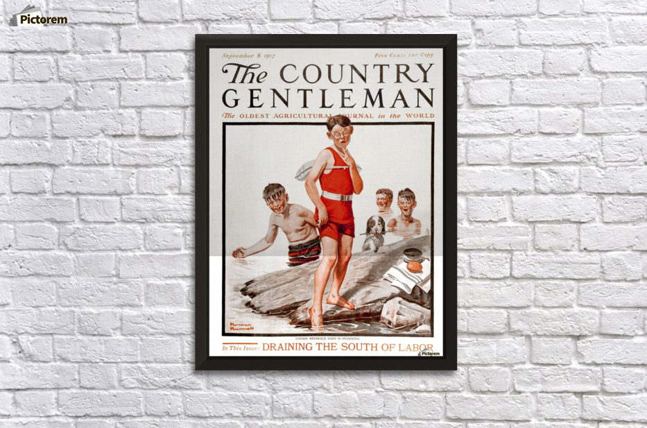 Cover of Country Gentleman agricultural magazine from the early 20th ...