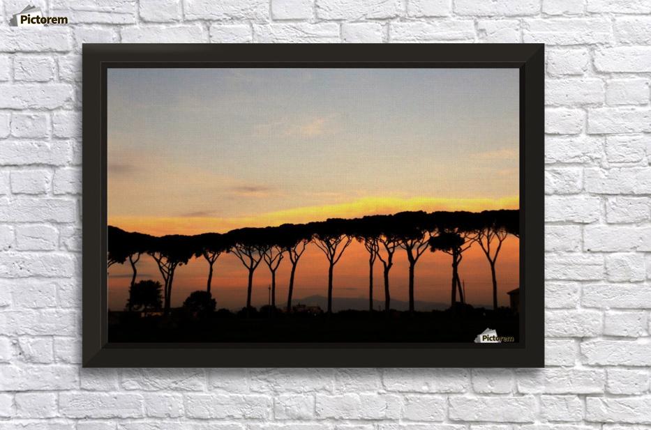 Italian Sunshine Sunset On Italian Landscape Pines The Roman