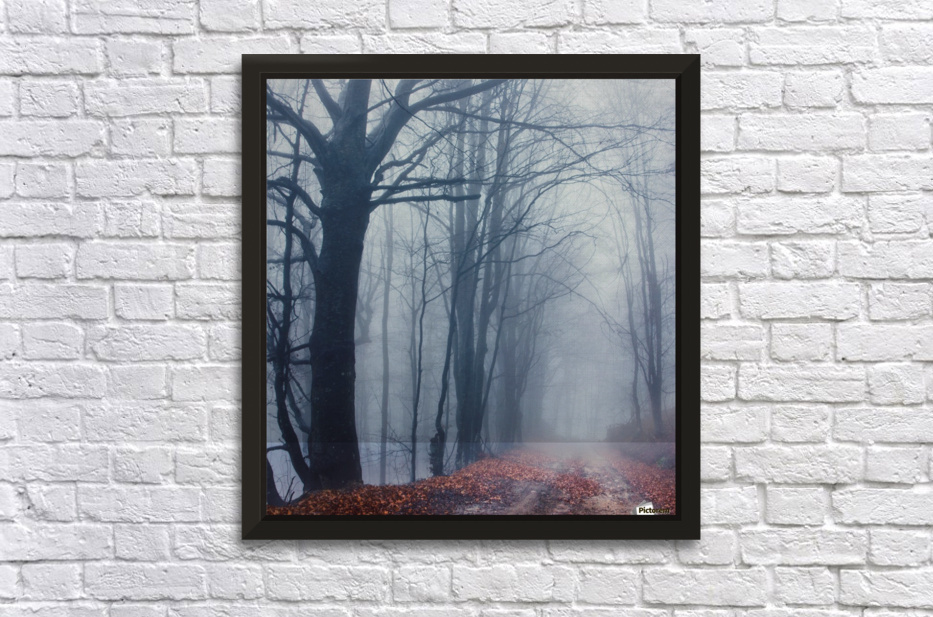 Autumn around us Stretched Frame Print
