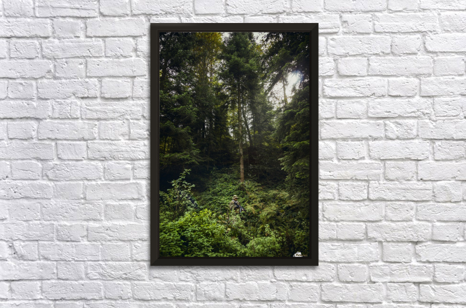 Forest warrior  Stretched Frame Print