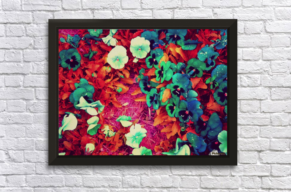 mwc garden flowers one Stretched Frame Print