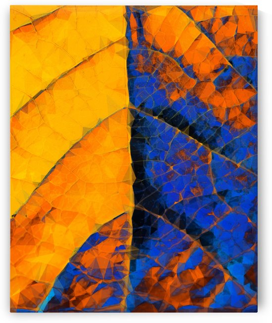 closeup leaf texture geometric triangle abstract pattern in blue orange yellow by TimmyLA