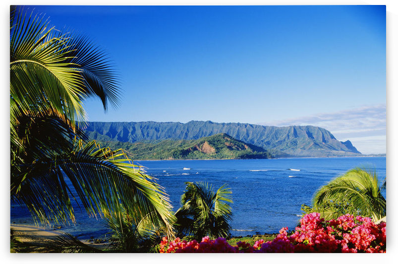 Hawaii, Kauai, Hanalei Bay, Bali Hai, Ocean And Coastline Framed With Flowers And Palms by PacificStock
