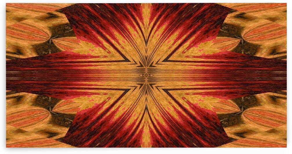 Dandelion Petals 3 by Sherrie Larch