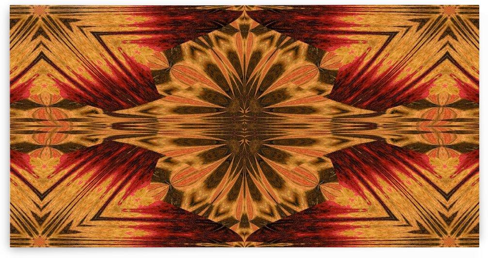 Dandelion Petals 2 by Sherrie Larch