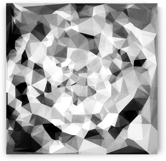 geometric polygon abstract pattern in black and white by TimmyLA