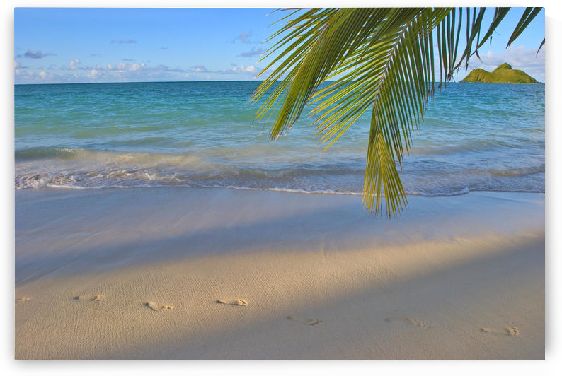 Hawaii, Oahu, Footprints In The Sand At Lanikai Beach Palm Frond And Mokulua Islands by PacificStock