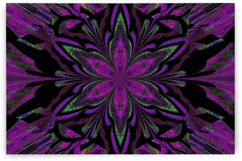 Purple Jasmine by Sherrie Larch