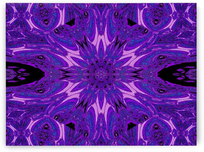 Metamorphosis Rose 3 by Sherrie Larch