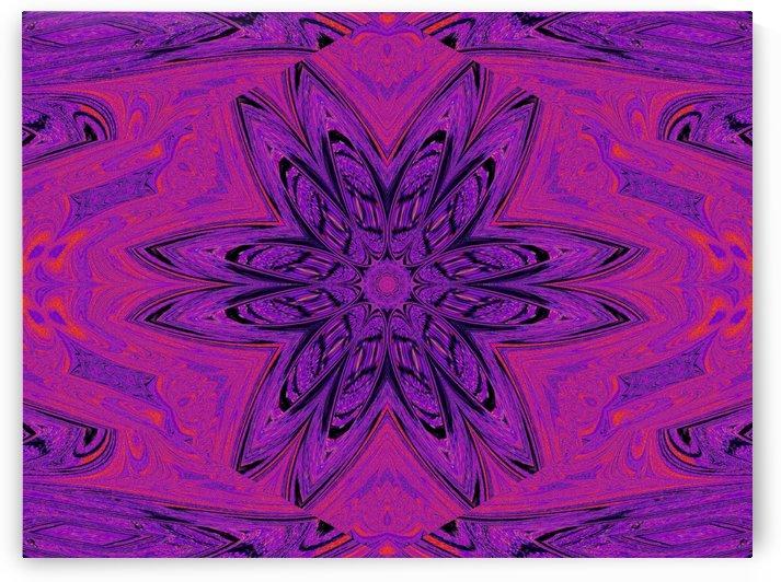 Purple Daisy  by Sherrie Larch