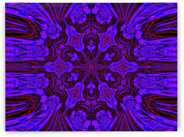 Nightshade in Red and Purple by Sherrie Larch