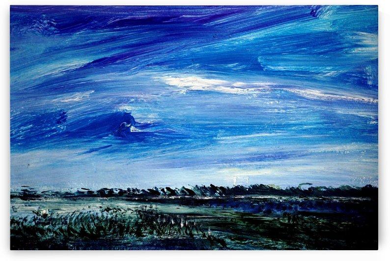 Sky and Fields by Pracha Yindee