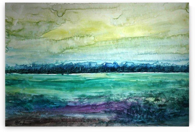 Fields2 by Pracha Yindee