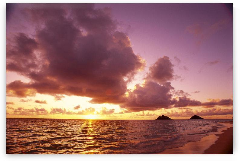 Hawaii, Oahu, Windward Coast, Mokulua Islands At Sunrise B1543 by PacificStock
