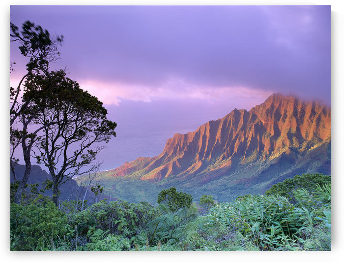 Hawaii, Kauai, Na Pali Coast, Kalalau Valley, Kaaalahina Ridge, Purple Sky B1535 by PacificStock