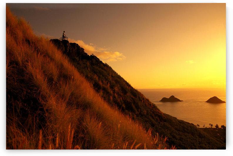 Hawaii, Oahu, Lanikai, Mountain Biking, View Of Mokulua Islands, B1241 by PacificStock