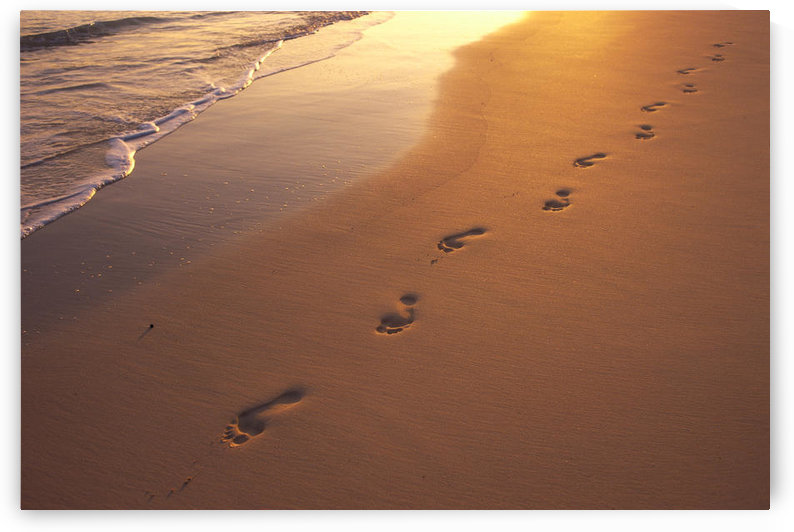 Footprints In Sand At Sunset, Shoreline Water B1452 by PacificStock