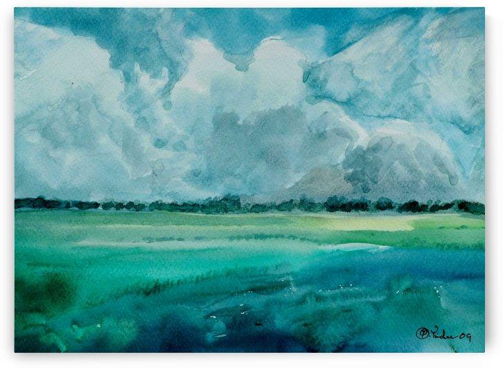 The Fields 5 by Pracha Yindee