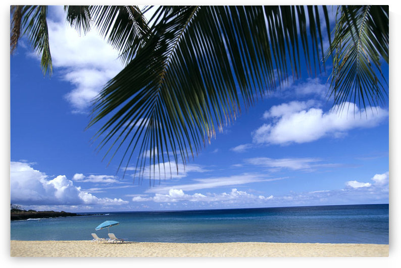 Hawaii, Lanai, Hulopoe Beach, Palm Fronds In Foreground, Beach Chairs And Umbrella C1589 by PacificStock
