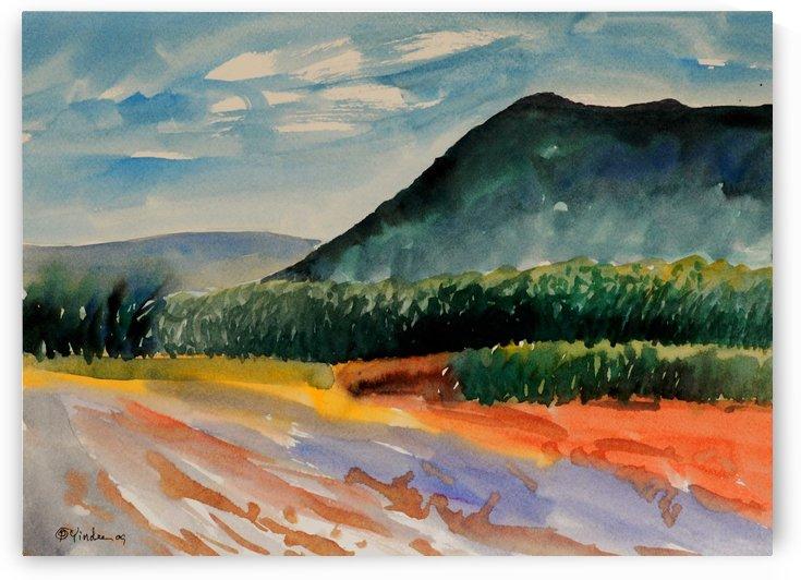 Landscape 5 by Pracha Yindee
