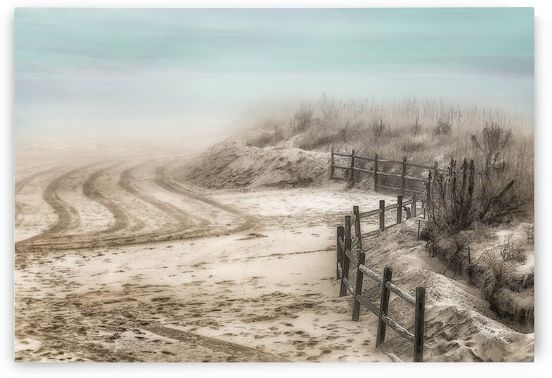 A Foggy Morning With Aqua Dreams  by Susan Werby