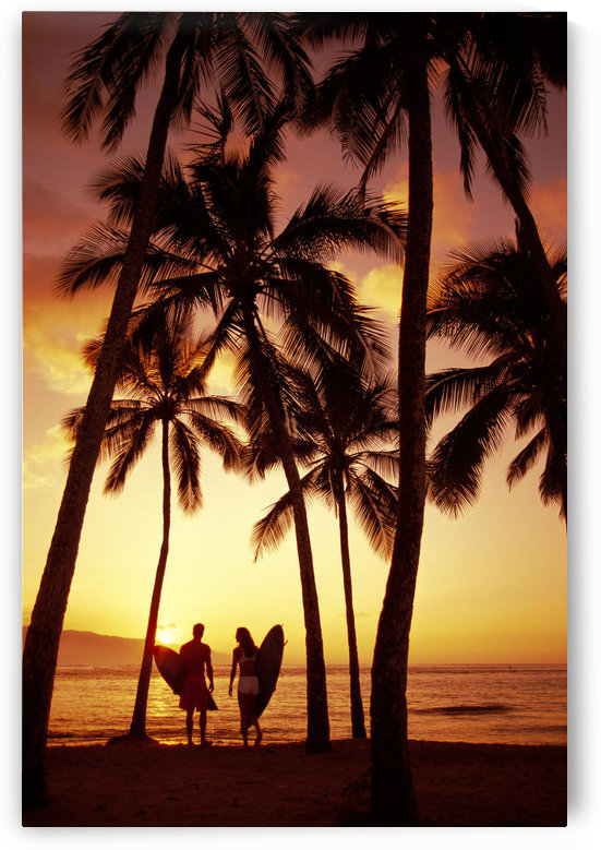 Hawaii, Oahu, North Shore, Couple Walk Along Shoreline Surfboard, Palms At Sunset Golden Silhouette by PacificStock