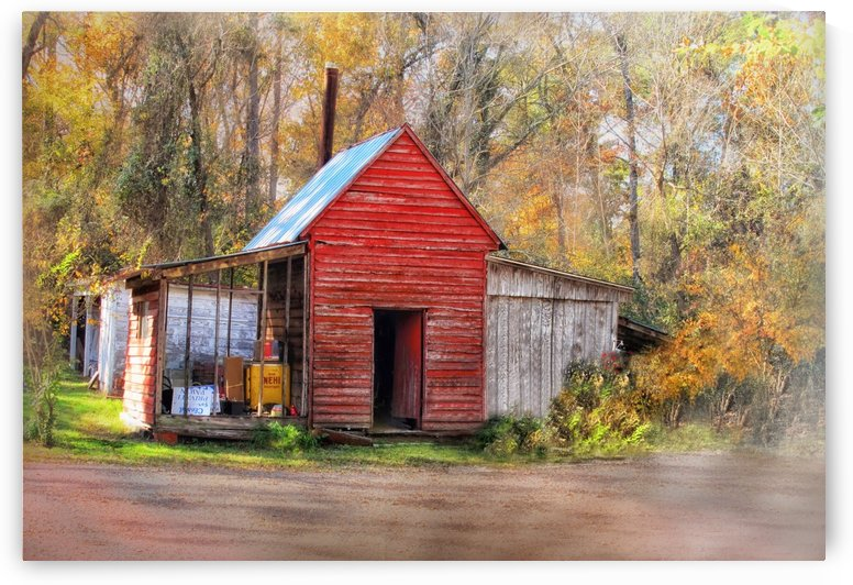 Country Store in the Woods  by Susan Werby