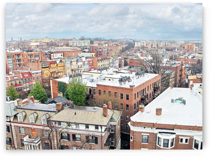City Roof Tops  by Susan Werby