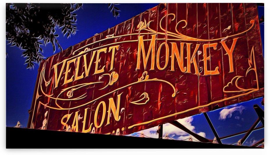 VELVET MONKEY OKC by Chazzi R  Davis
