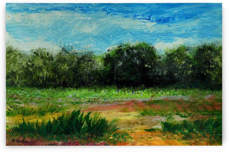 Fields 4 by Pracha Yindee