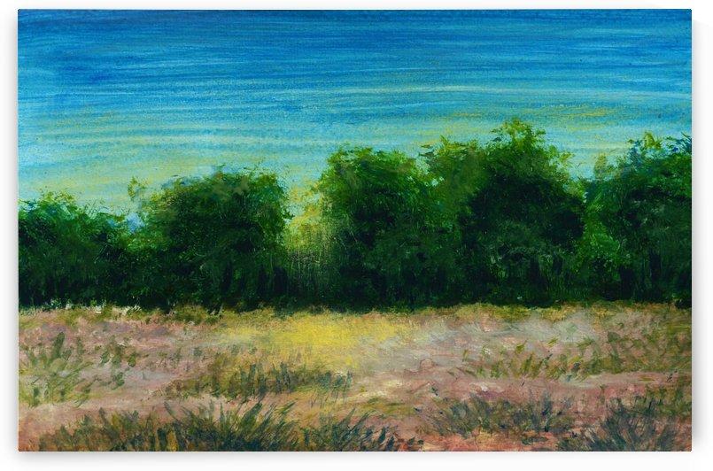 Landscape 11 by Pracha Yindee