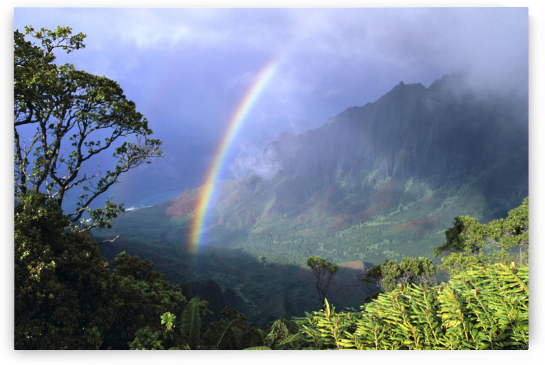 Hawaii, Kauai, Rainbow Over Kalalau Valley, Misty Clouds, Trees And Growth On Mountains by PacificStock