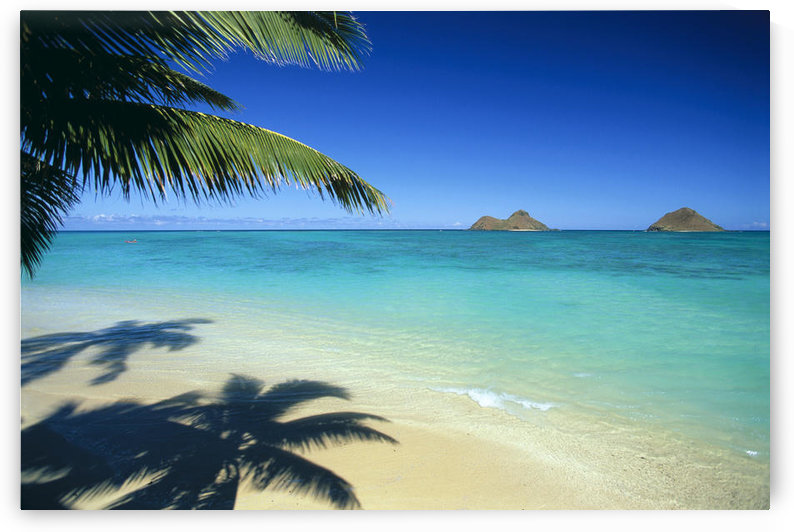 Hawaii, Oahu, Lanikai Beach With Calm Turquoise Water, Mokulua Islands Background Palm Fronds And Shadow Foreground by PacificStock
